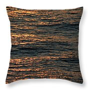 Morning Becomes Throw Pillow