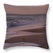 Morning Birds At The Beach Throw Pillow