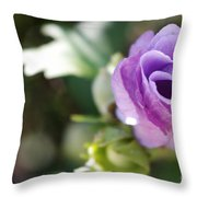 Morning Blossom Throw Pillow