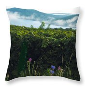 Morning Blossoms Throw Pillow