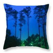 Morning Colors Throw Pillow