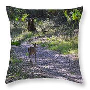 Morning Deer Throw Pillow