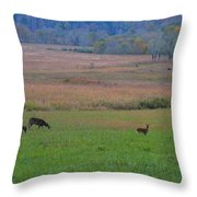 Morning Deer In Cades Cove Throw Pillow
