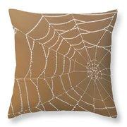 Morning Dew On Web Throw Pillow
