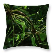 Morning Dews Throw Pillow