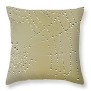 Morning Diamonds Throw Pillow