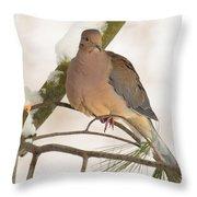 Morning Dove Throw Pillow