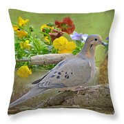 Morning Dove With Pansies Throw Pillow