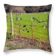 Morning Doves In December  Throw Pillow