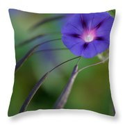 Morning Excitement Throw Pillow