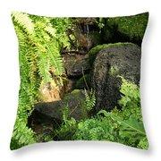 Morning Ferns Throw Pillow