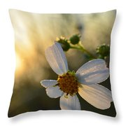 Morning Flower Throw Pillow