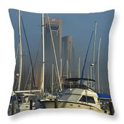 Morning Fog Ll Throw Pillow
