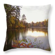 Morning Fog On The Lake Throw Pillow