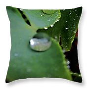 Morning Fresh Leaves With Droplets Throw Pillow