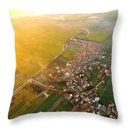 Morning Glory At River Nile Throw Pillow