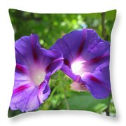 Morning Glory Couple Or 2 Purple Ipomeas Throw Pillow