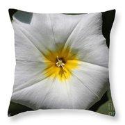 Morning Glory Named White Ensign Throw Pillow