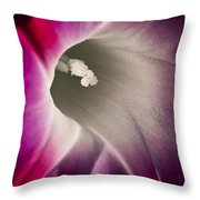 Morning Glory Pink Throw Pillow by Roger Snyder