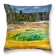 Morning Glory Pool Throw Pillow