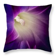 Morning Glory Purple Throw Pillow by Roger Snyder