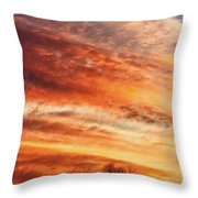 Morning Has Broken Throw Pillow