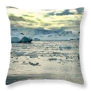 Morning Ice Flow Throw Pillow