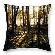 Morning In Canoe Country Throw Pillow