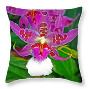 Morning Joy Orchid Throw Pillow