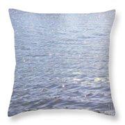 Morning Lake Throw Pillow