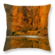 Morning Light In The Canyon Throw Pillow