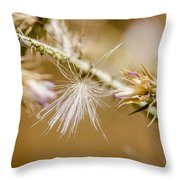 Morning Lights  Throw Pillow