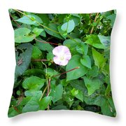 Morning Magenta Glow Throw Pillow