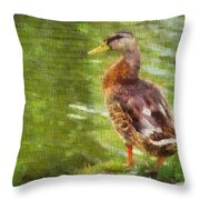 Morning Mallard Throw Pillow