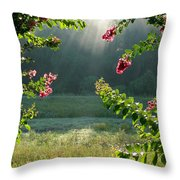 Morning Marsh Throw Pillow