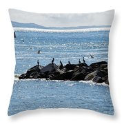 Morning Meeting - Lyme Regis Throw Pillow