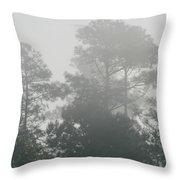 Morning Mist 3 Throw Pillow