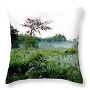 Morning Mist Throw Pillow