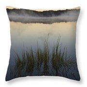 Morning Mist At Sunrise Throw Pillow by David Gordon