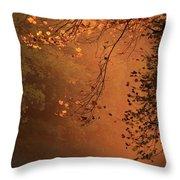 Morning Mist-blue Ridge Parkway Throw Pillow