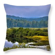 Morning Mist On The Moose River Throw Pillow by David Patterson