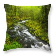 Morning Misty Creek Throw Pillow