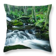 Morning On Hancock Brook Throw Pillow