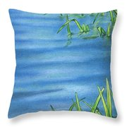 Morning On The Pond Throw Pillow