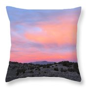 Morning Paints Throw Pillow