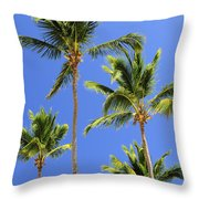 Morning Palms Throw Pillow by Elena Elisseeva