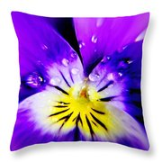 Morning Pansy Throw Pillow