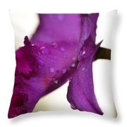 Morning Rain - Orchid Photography By Sharon Cummings Throw Pillow