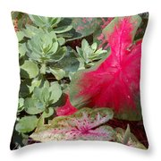 Morning Rain Throw Pillow