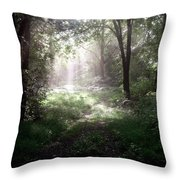 Morning Rays Throw Pillow by Melissa Krauss